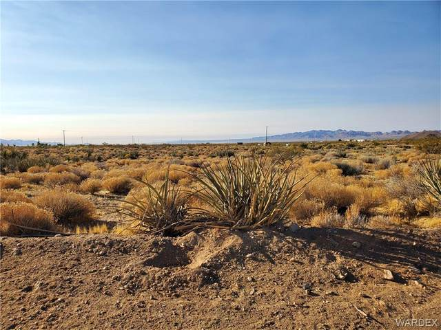 Lot 8 Herbert Drive, Golden Valley, AZ 86413 (MLS #973237) :: The Lander Team