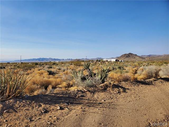 Lot 9 Herbert Drive, Golden Valley, AZ 86413 (MLS #973238) :: The Lander Team