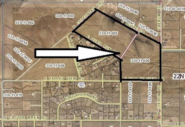 0000 E Quail Run Road, Kingman, AZ 86409 (MLS #975059) :: The Lander Team