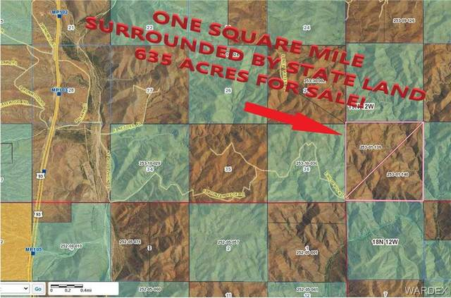 635 Acres Ridge Rock Rd, Kingman, AZ 86401 (MLS #976757) :: AZ Properties Team | RE/MAX Preferred Professionals