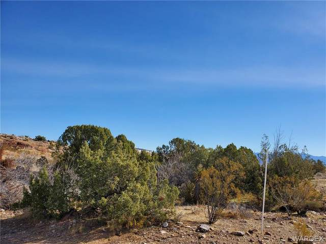 3351 Boriana Road, Golden Valley, AZ 86413 (MLS #977301) :: The Lander Team