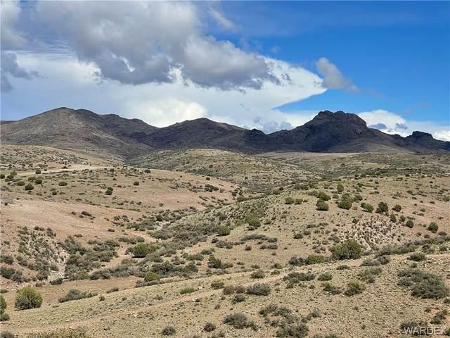 Lot 221 Wagon Bow Ranch, Wikieup, AZ 85360 (MLS #977877) :: AZ Properties Team | RE/MAX Preferred Professionals