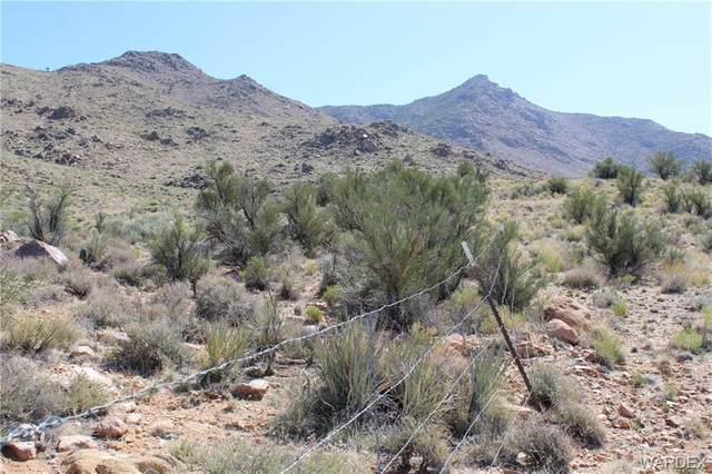 TBD Silver Springs, Kingman, AZ 86401 (MLS #978071) :: AZ Properties Team | RE/MAX Preferred Professionals