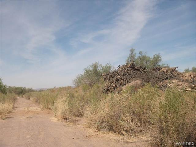2798 Silver Mesa Drive, Mohave Valley, AZ 86440 (MLS #979994) :: The Lander Team
