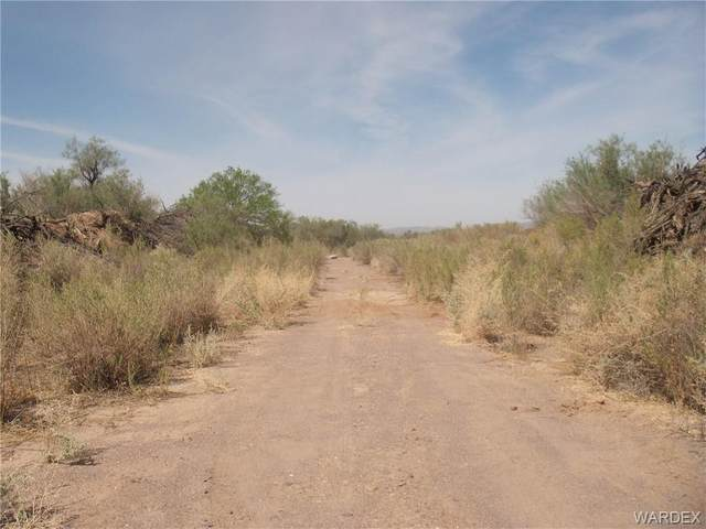 2861 Desert Flora Place, Mohave Valley, AZ 86440 (MLS #979997) :: The Lander Team