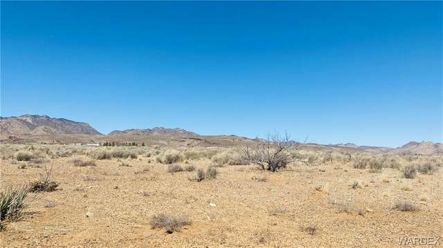 15C Longee Avenue, Kingman, AZ 86401 (MLS #980279) :: The Lander Team