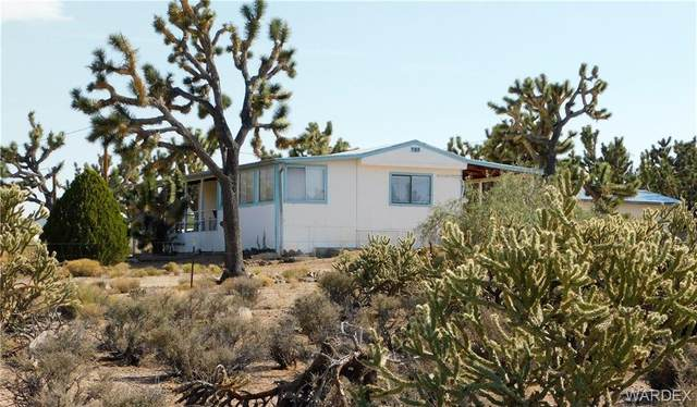 26275 N Rainbow Road, Meadview, AZ 86444 (MLS #982008) :: AZ Properties Team | RE/MAX Preferred Professionals