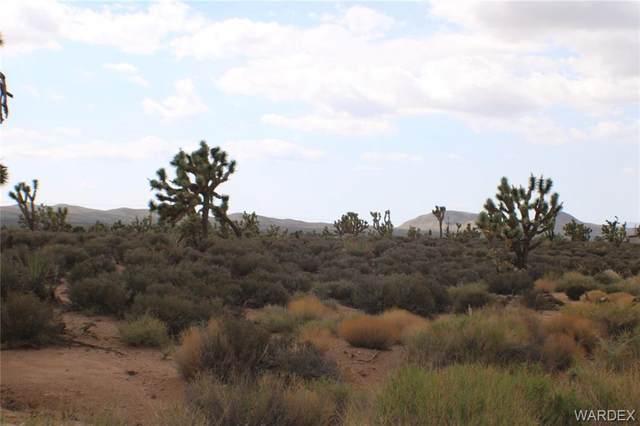 26681 N Saguaro Road, Meadview, AZ 86444 (MLS #984376) :: The Lander Team