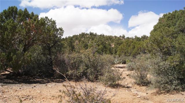 6731 N Trap Springs Road, Hackberry, AZ 86411 (MLS #914965) :: The Lander Team
