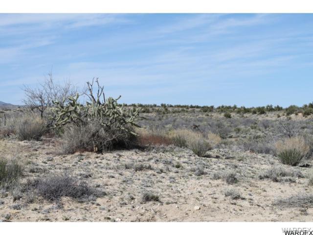 57 Cat's Claw Trail, Kingman, AZ 86401 (MLS #904453) :: The Lander Team