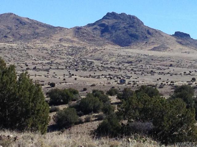 Lot 245 Prairie Schooner, Wikieup, AZ 85360 (MLS #911003) :: The Lander Team