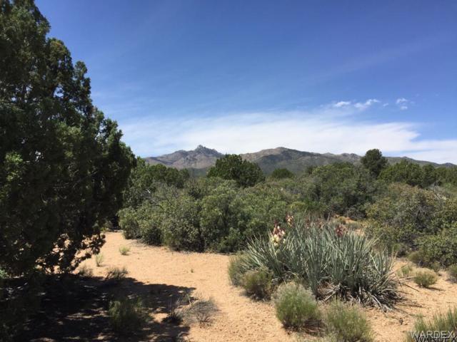 0000 Cedar Oasis Lane, Kingman, AZ 86401 (MLS #927064) :: The Lander Team