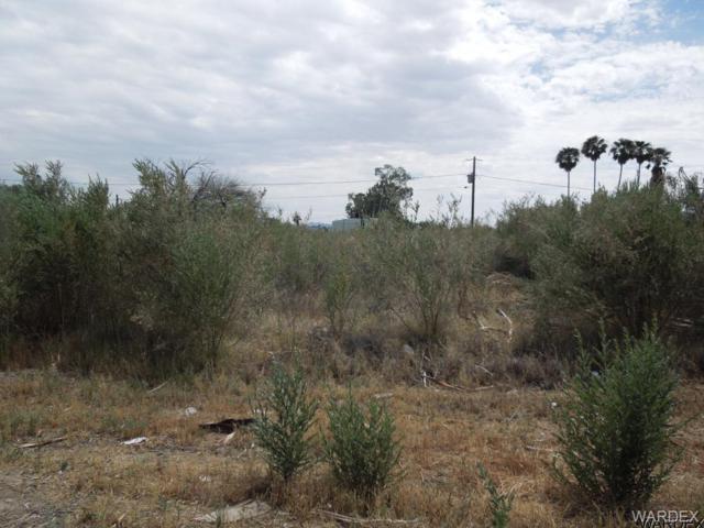 10398 S Plantation Drive, Mohave Valley, AZ 86440 (MLS #931447) :: The Lander Team