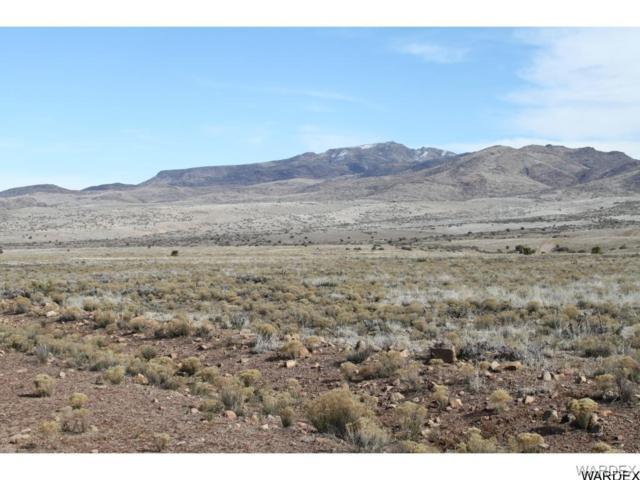 Lot 148 S Great Western Road, Wikieup, AZ 85360 (MLS #933865) :: The Lander Team