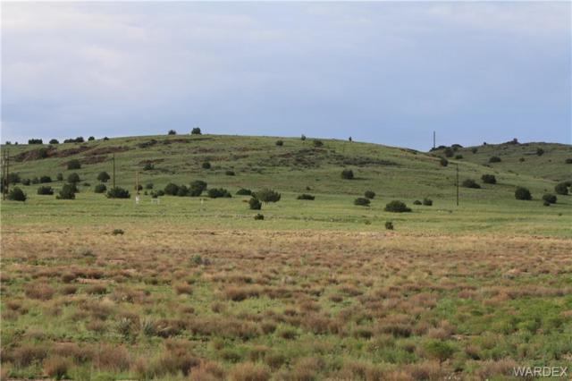 Lot 156 Antelope & Williamson Valley Road, Seligman, AZ 86337 (MLS #952957) :: The Lander Team
