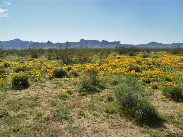 /// Unkar Road, Golden Valley, AZ 86413 (MLS #956762) :: The Lander Team