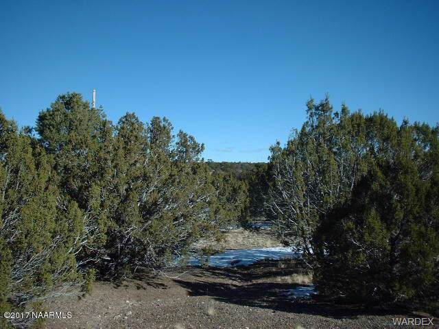 Lot 770 Younger Trail, Seligman, AZ 86337 (MLS #956074) :: The Lander Team