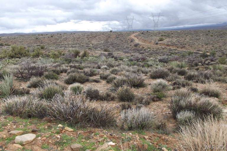 00 Greasewood Trail, Kingman, AZ 86401 (MLS #956264) :: The Lander Team