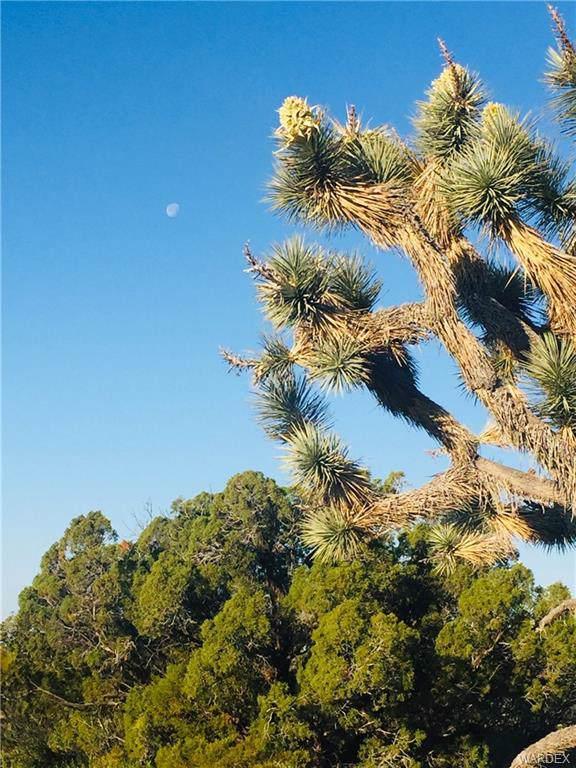 Parcel 2685 S Well Rd, Yucca, AZ 86438 (MLS #956782) :: The Lander Team