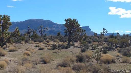 26792 N Yucca Road, Meadview, AZ 86444 (MLS #957460) :: The Lander Team