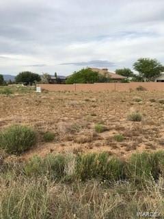 9632 N Pebble Drive, Kingman, AZ 86401 (MLS #958242) :: The Lander Team