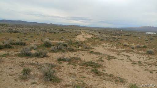 Lots 70 & 75 Water Tank/Carmack, Dolan Springs, AZ 86441 (MLS #958590) :: The Lander Team