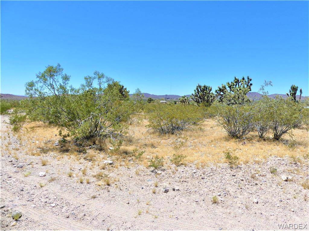 TBD Mariposa (Owner Financing Water Lot) Drive - Photo 1