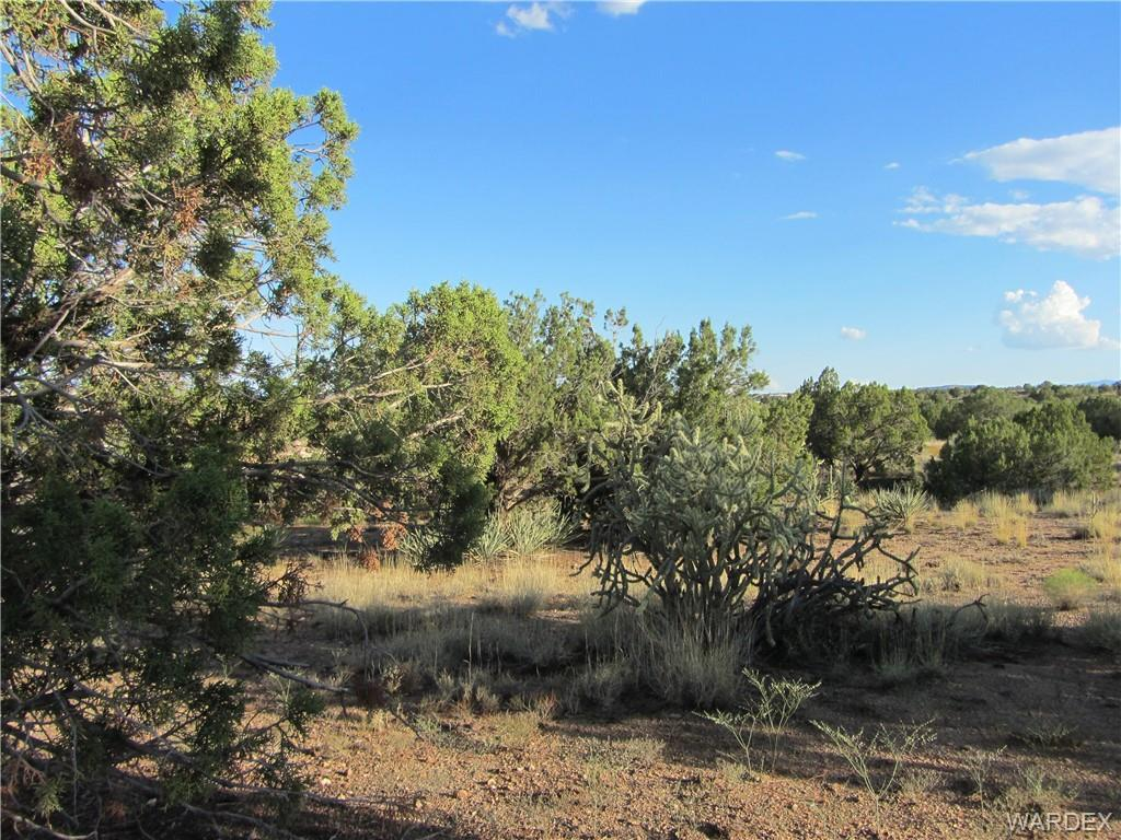 0000 Blake Ranch Rd - Photo 1