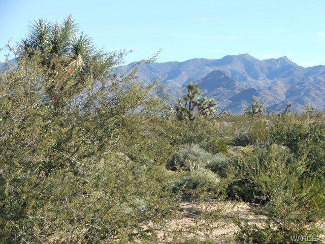 Parcel 3529 Arroyo Road, Yucca, AZ 86438 (MLS #960915) :: The Lander Team