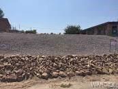 1061 Terrace Drive, Bullhead, AZ 86442 (MLS #962881) :: The Lander Team