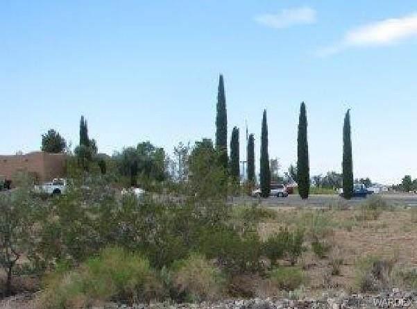 7692 E Monte Tesoro Drive, Kingman, AZ 86401 (MLS #964677) :: The Lander Team
