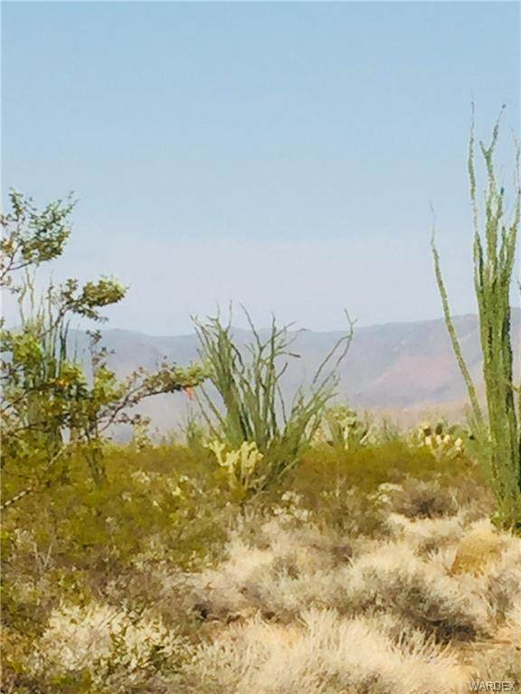 537A W Juniper Drive, Yucca, AZ 86438 (MLS #966121) :: The Lander Team