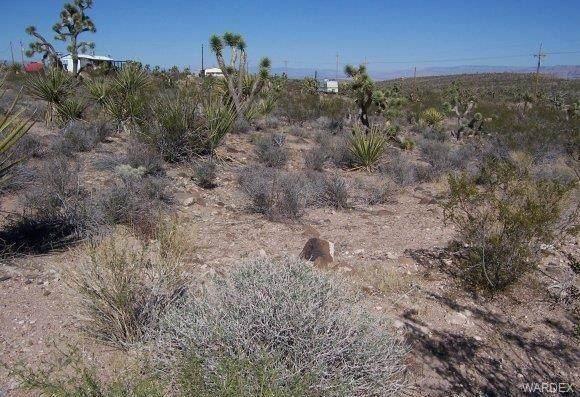 1442 W Calico Drive, Meadview, AZ 86444 (MLS #973455) :: The Lander Team