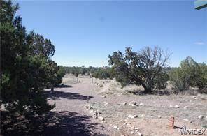 00 Unknown, Seligman, AZ 86337 (MLS #975042) :: AZ Properties Team | RE/MAX Preferred Professionals