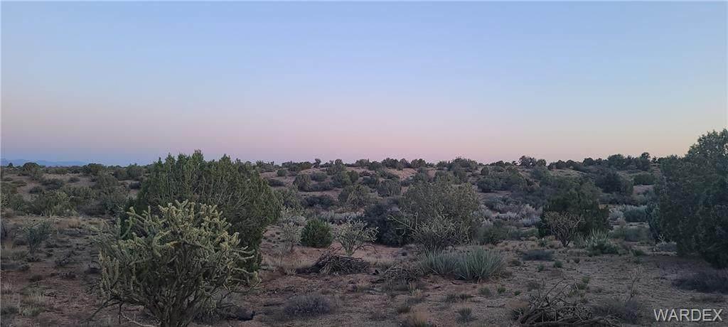 10.52 acres Lan Drive - Photo 1