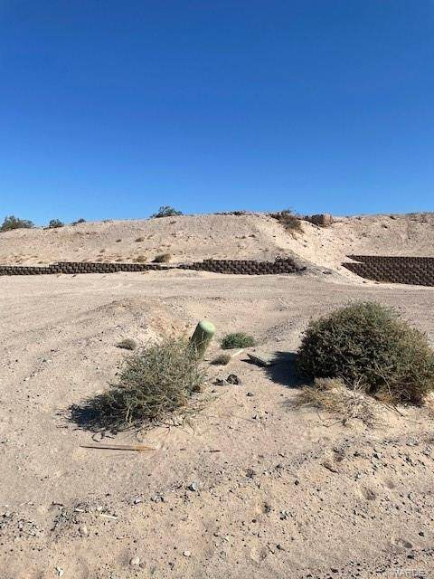 2041 Mesa Amarilla - Photo 1