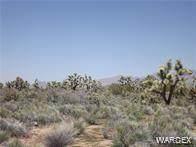 Parcel 1048 Kit Carson Road, Yucca, AZ 86438 (MLS #981192) :: The Lander Team
