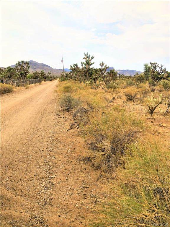 LOT 33 N Rose Drive, Dolan Springs, AZ 86441 (MLS #982082) :: AZ Properties Team | RE/MAX Preferred Professionals