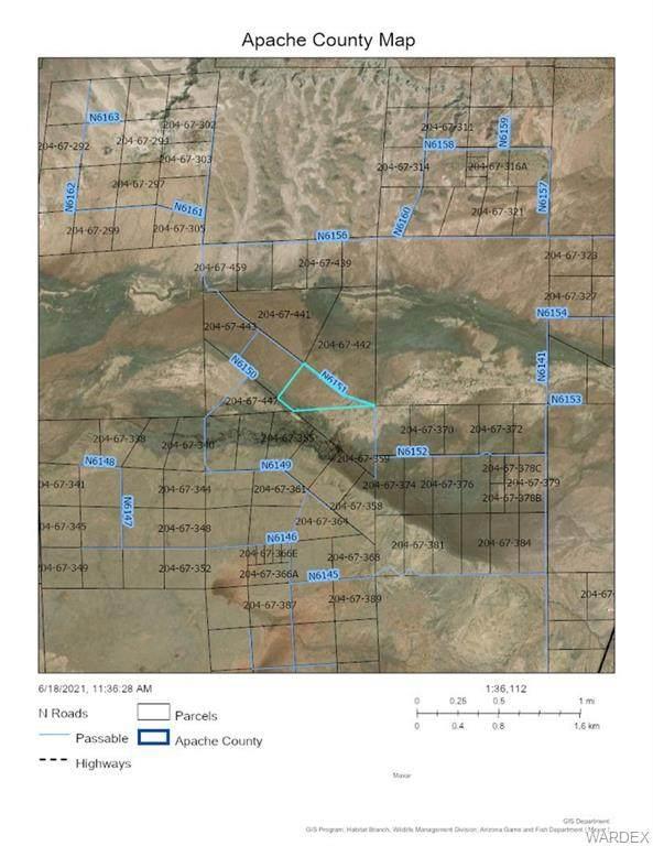 0000 County N6151 Rd., St Johns, AZ 85936 (MLS #983290) :: The Lander Team
