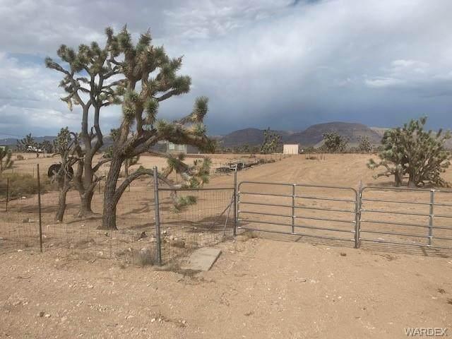 26726 N Sandy Point Drive, Meadview, AZ 86444 (MLS #983515) :: The Lander Team