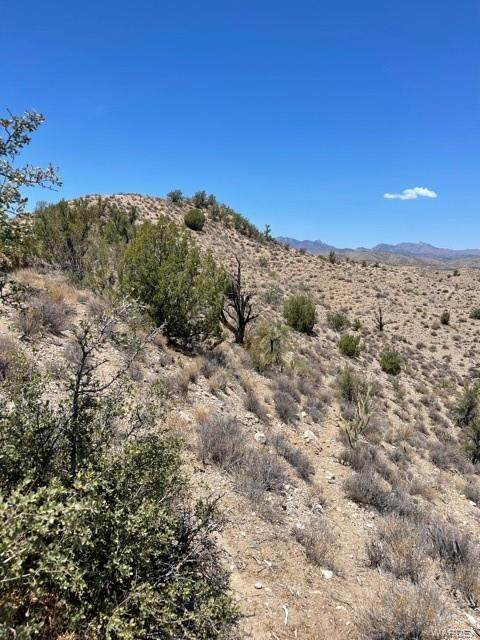 Lot 85 Cougar Drive, Kingman, AZ 86401 (MLS #983724) :: AZ Properties Team | RE/MAX Preferred Professionals