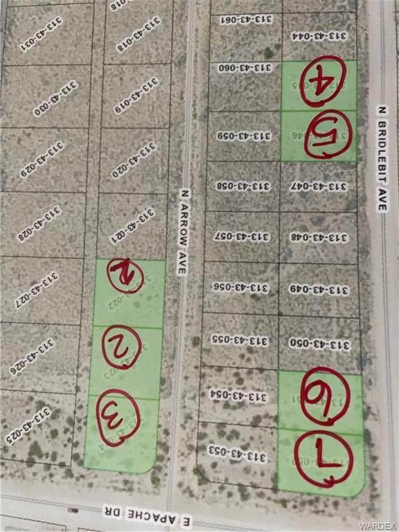 9428 N Bridlebit Avenue, Kingman, AZ 86401 (MLS #984406) :: AZ Properties Team | RE/MAX Preferred Professionals