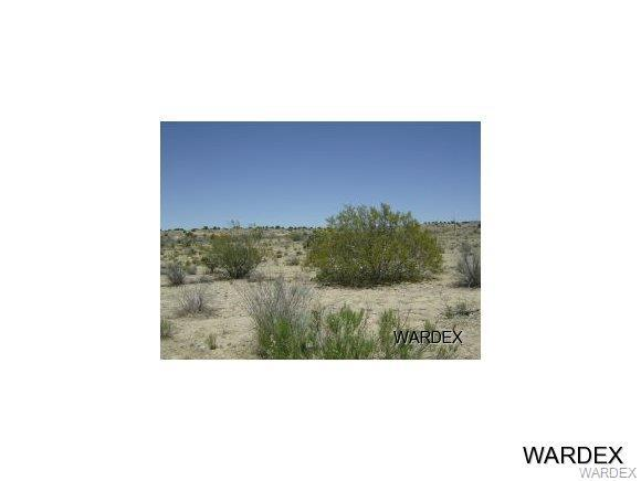 14770 E Randy Ranch Road, Kingman, AZ 86401 (MLS #939967) :: The Lander Team