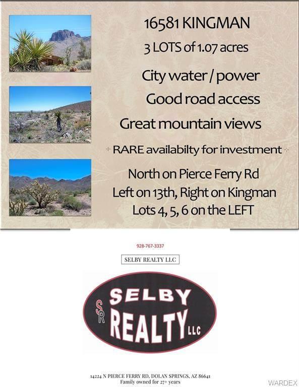 16549 N City Water Kingman Drive, Dolan Springs, AZ 86441 (MLS #969822) :: The Lander Team