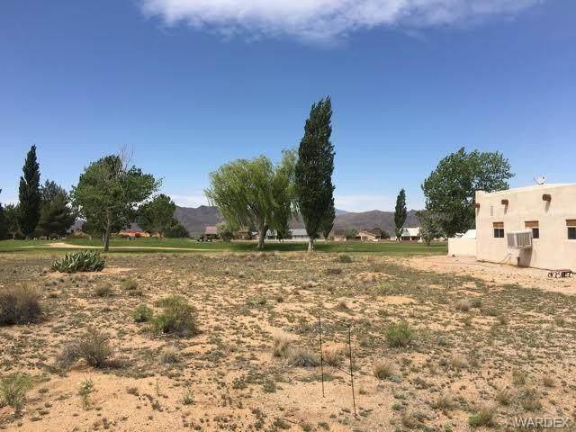 9729 N Pebble Drive, Kingman, AZ 86401 (MLS #981563) :: The Lander Team