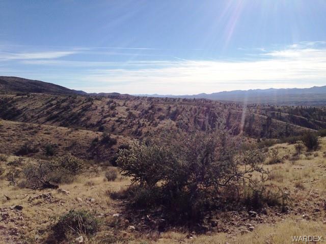 Lot 63 Mountain Goat Road, Kingman, AZ 86401 (MLS #921581) :: The Lander Team
