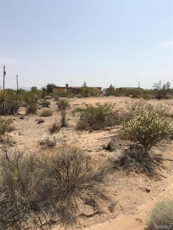 1150 Price Drive, Meadview, AZ 86444 (MLS #981381) :: AZ Properties Team | RE/MAX Preferred Professionals