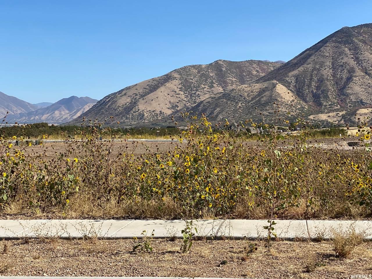 335 Summit Creek Dr. - Photo 1