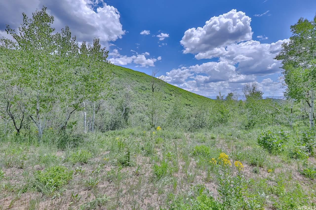 10215 Basin Canyon Rd - Photo 1