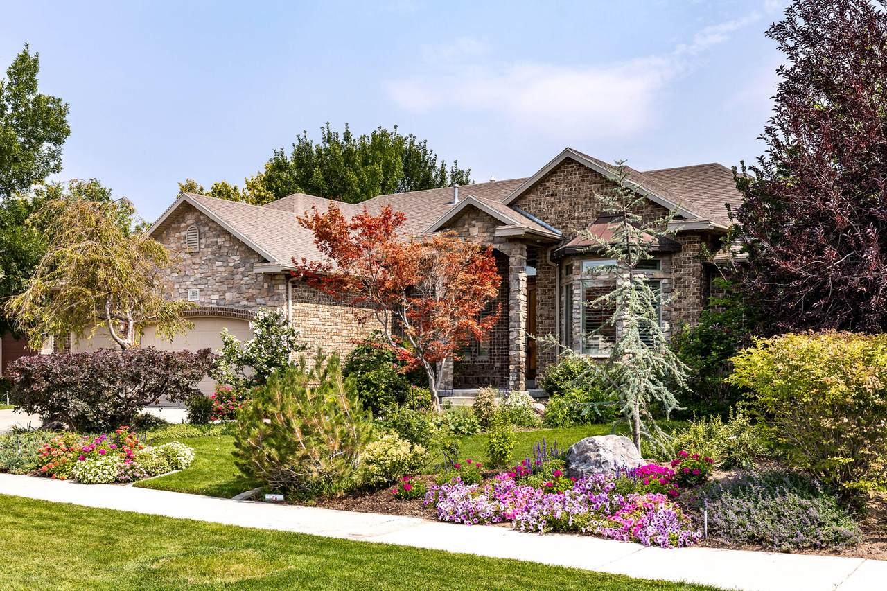 13103 Crystal Spring Dr - Photo 1
